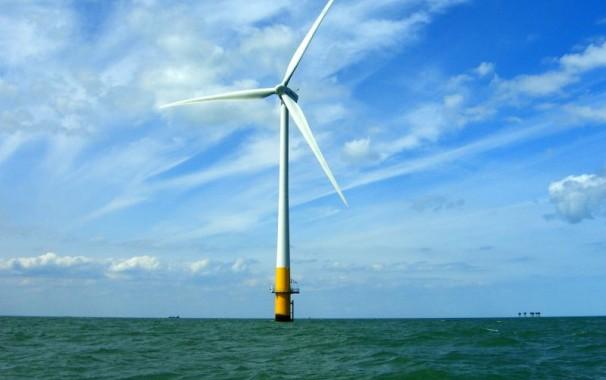 白海豚设栖息地避免设置离岸风力机